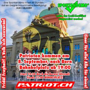 SPONTANDEMO! Patrioten kommen heute nach Bern!