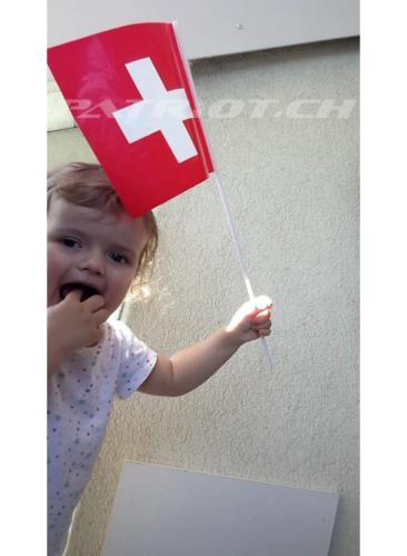 #eidgenossin #fähnli #1august #nationalfeiertag #bundesfeier #fêtenationale #1eraoût #festanazionale #1agosto