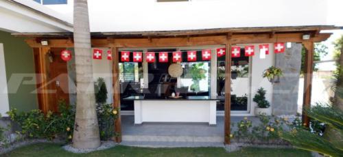 #fähnli #lampion #auslandschweizer #1august #nationalfeiertag #bundesfeier #fêtenationale #1eraoût #festanazionale #1agosto