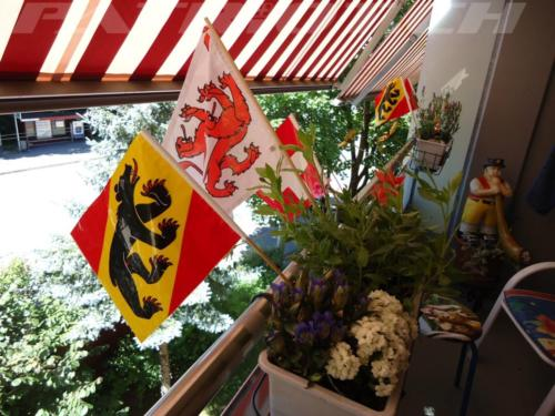 #fähnli #bern #winterthur #alphornbläser #1august #nationalfeiertag #bundesfeier #fêtenationale #1eraoût #festanazionale #1agosto