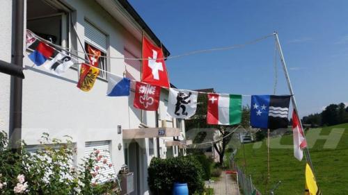#fahne #fähnli #kantone #1august #nationalfeiertag #bundesfeier #fêtenationale #1eraoût #festanazionale #1agosto