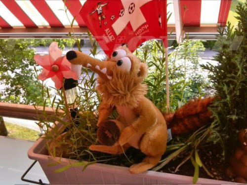 #fähnli #rotweiss #1august #nationalfeiertag #bundesfeier #fêtenationale #1eraoût #festanazionale #1agosto