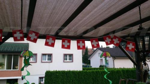 #fähnli #1august #nationalfeiertag #bundesfeier #fêtenationale #1eraoût #festanazionale #1agosto dankä dinu !