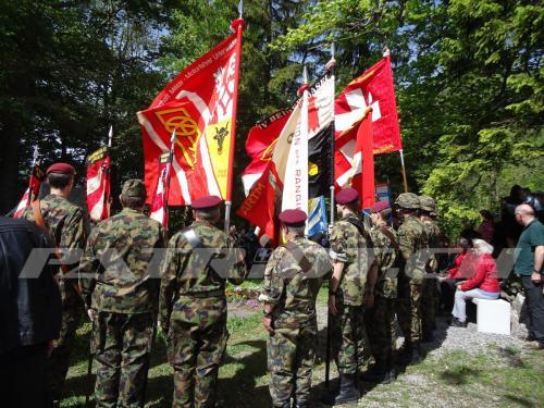 #gedenkfeier #VSMMV #brünigdenkmal #brünig #brünigpass #armee #militär #swissarmy#fahnenträger