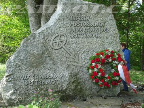 #gedenkfeier #VSMMV #brünigdenkmal #brünig #brünigpass #armee #militär #swissarmy#denkmal