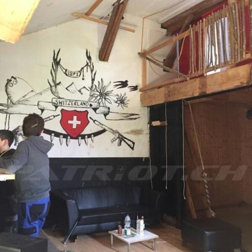 #switzerland #sig550 #1291 #edelweiss