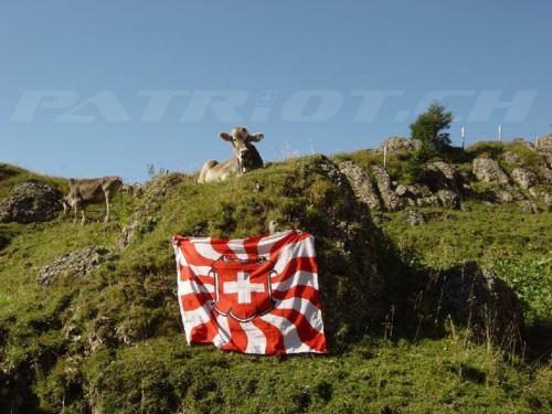 #fahne #kuh #speer