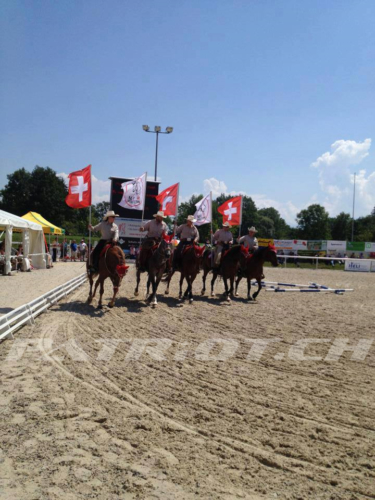 #pferde #fahne