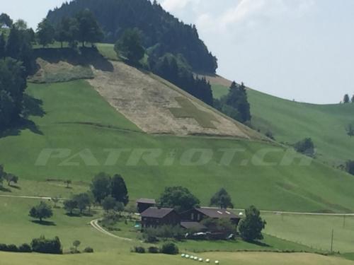 #wiese #schweizerkreuz #schwarzenberg #luzern