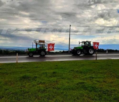 #deutz #traktor #fahne