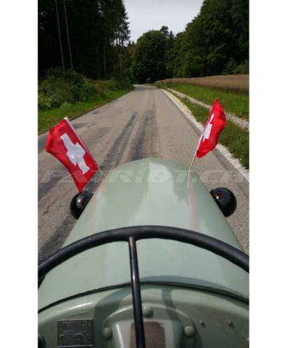 #ferguson #fergusontea20 #traktor #bauer #buur