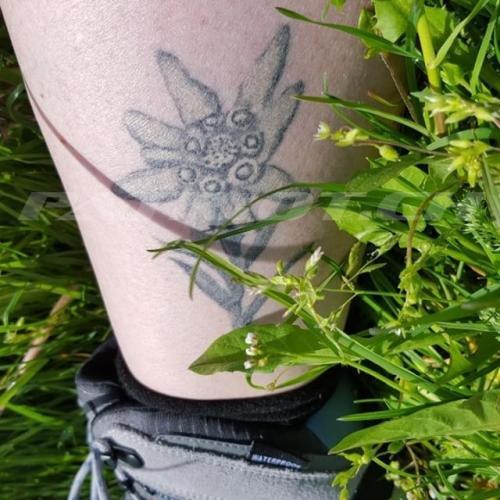 #tattoo #tattoos #edelweiss