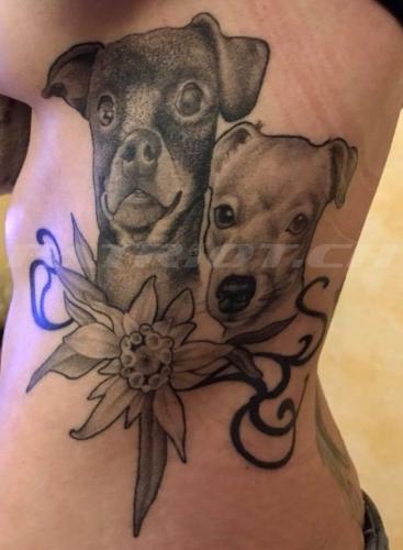 #tattoo #tattoos #edelweiss #hund