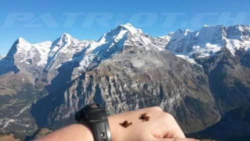 #schilthorn #eiger #mönch #jungfrau #schnupf #priis