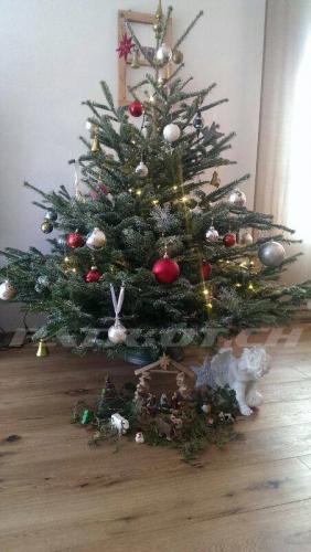 #weihnachten #wiehnacht #wiehnachte #wiehnachtsbaum #weihnachtsbaum #christbaum #tannenbaum #jesus
