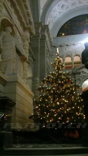 #weihnachten #wiehnacht #wiehnachte #wiehnachtsbaum #weihnachtsbaum #christbaum #tannenbaum #jesus #bundeshaus #bern
