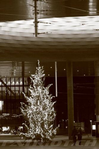 #weihnachten #wiehnacht #wiehnachte #wiehnachtsbaum #weihnachtsbaum #christbaum #tannenbaum #jesus #basel