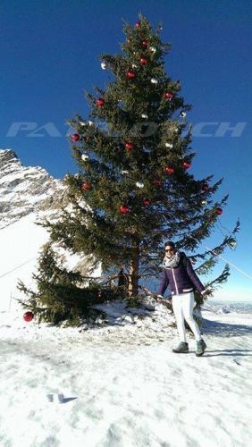 #weihnachten #wiehnacht #wiehnachte #wiehnachtsbaum #weihnachtsbaum #christbaum #tannenbaum #jesus #jungfraujoch #grindelwald