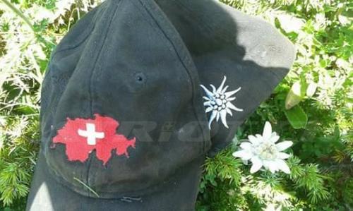 #valposchiavo #graubünden #edelweiss